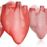 3D Bioprinting of Living Human Tissues Organs Market
