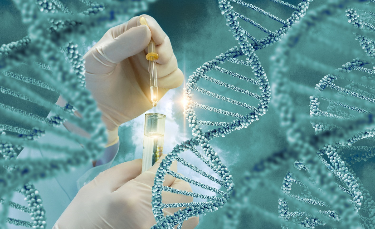 Molecular Diagnostics Technology To Attain A Market