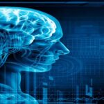 Cerebral Embolic Protection Devices Market