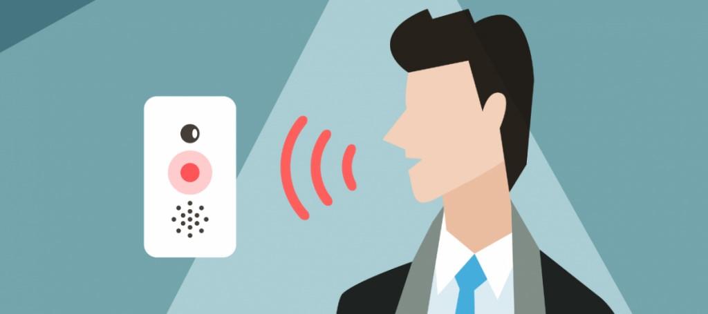 Voice Assistance Commerce Market