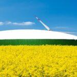 Bioenergy Market