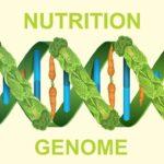 Nutrigenomics Market