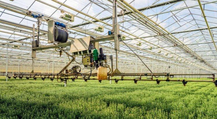Smart Plantation Management Systems